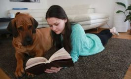 Best Dog Training Books For Beginners