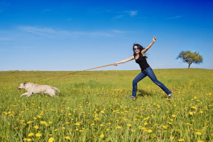 How to Stop Dog From Pulling on Leash
