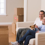 Help Your Dogs Adjust to Your New Home