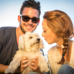 What to Do When Your Dog Hates Your Spouse