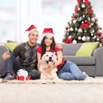 2016 Gift Ideas For Dog Lovers