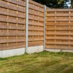 The Best Affordable & Modern Fence For Dogs