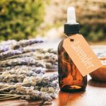 Calming Essential Oils For Dog Anxiety