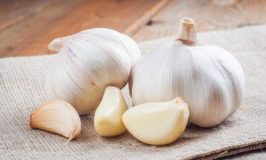 Can Dogs Eat Garlic? The Answer Might Surprise You!