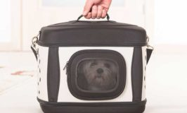 Portable Dog Carriers Keep Your Dog Safe And Your Shoulders Pain-Free