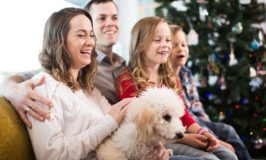 4 Ways To Prepare Your Dog For Holiday Parties