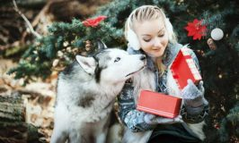 2017 Christmas Gifts For Dog Lovers