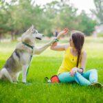 Dog Pawing Behavior: What It Means And How To Stop It