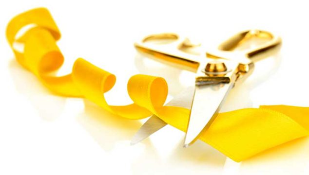 The Meaning Behind Those Yellow Ribbons On Dogs